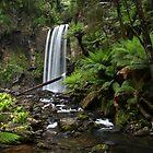 Hopetoun Falls, Vic by kcy011