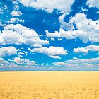 field of dreams, near Lightning Ridge, NSW, Australia by yellowfield