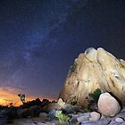 Joshua Tree Night Sky by Flux Photography