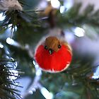 Christmas Robin by Lynn Ede