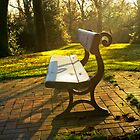 Frosty park bench by Trish  Anderson