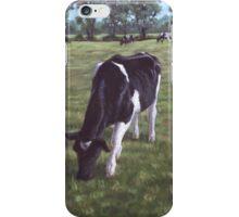 Cow in field at Throop,UK iPhone Case/Skin