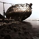 Beached by MatthewWardle