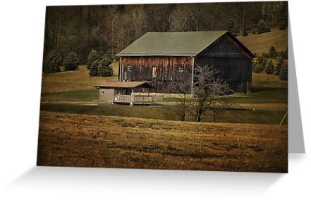 So many barns, so little time by vigor