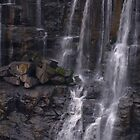 Ebor Falls by Barbara Burkhardt