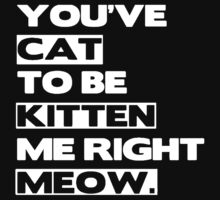 You've Cat to be Kitten Me Right Meow by dtdream
