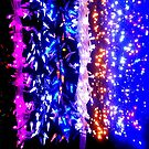 Christmas Lights  by Janie. D