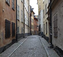 cityscape street in old town by mrivserg