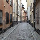 street in old town by mrivserg