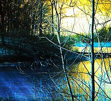 Sunlit River by MSRowe Art and Design