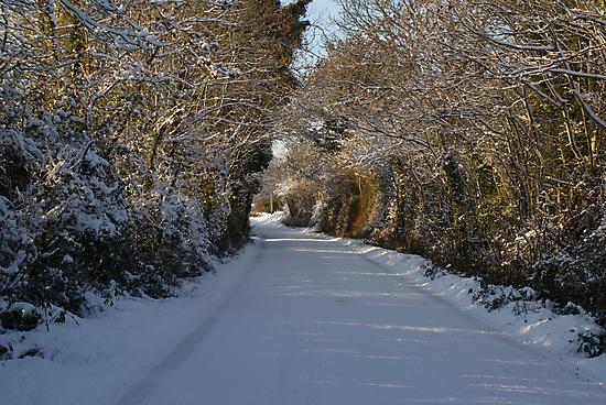 Snowy lane by Desaster