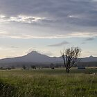 Scenic Rim view from Cedar Grove, QLD, Australia by LizSB