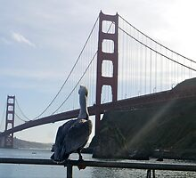 The Golden Gate Bridge, San Francisco by ADayToRemember