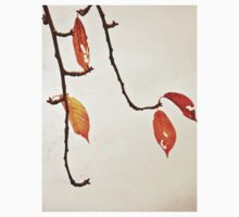 Red Leaves Falling Through The Branches Kids Clothes