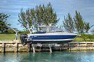 Ramblin' Man in Nassau, The Bahamas by 242Digital