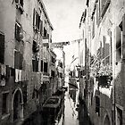 Venice by inourgardentoo