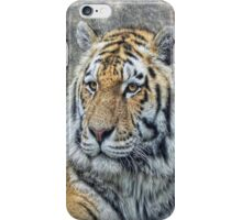 Panthera Tigris iPhone Case/Skin