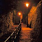 Pathway Uphill at Night by magicaltrails
