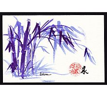 Now and Zen - Original Plein Air Bamboo drawing/painting at Huntington Library and Gardens Photographic Print