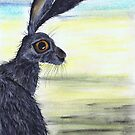 HARES & OTHER CRITTERS by Hares & Critters