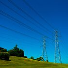 Power Lines by Dimuthu  Sudasinghe