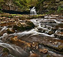 Couldron Falls, West Burton by Phillip Dove