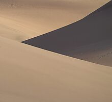 Dune Lines - iPad Case by SynappedPhoto