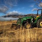 John Deere by BikerChic