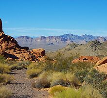 Desert near Lake Mead, Nevada by Claudio Del Luongo