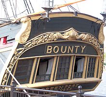 Bounty II (Stern) - Bay City - Tall Ship Celebration (2010) by Francis LaLonde