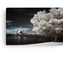 Smorgys - Infrared Canvas Print