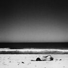 a beach to yourself by wellman