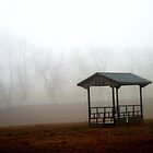 Fog on the Farm by RockyWalley
