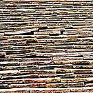 Roof Tiles © by Ethna Gillespie