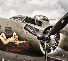 Sally B by Ian Merton