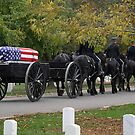 A Funeral in Arlington by Cora Wandel