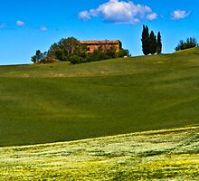 Fields near Pienza, Tuscany by vivsworld