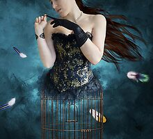 The Bird Cage by Maria Paola R