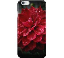 blood red.... soaked with raindrops iPhone Case/Skin