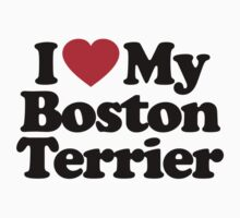 I Love My Boston Terrier by iheart