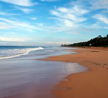 Beach in Sri Lanka by Haz Preena