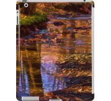 A Walk In the Creek iPad Case/Skin