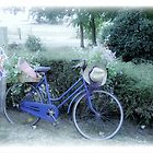 English Bike in France by PaulineC