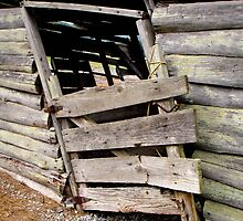 Horse Shed Door by debidabble