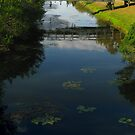 Bridge & Water by sunsetrainbow
