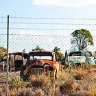 Car graveyard, Lightning Ridge, NSW by yellowfield
