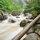 Keppel Creek by S T