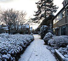 Let It Snow by esmerose
