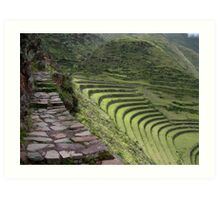 Path to an Andean  Wonder Art Print