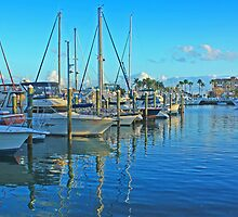 north dock city marina, ft pierce by cliffordc1